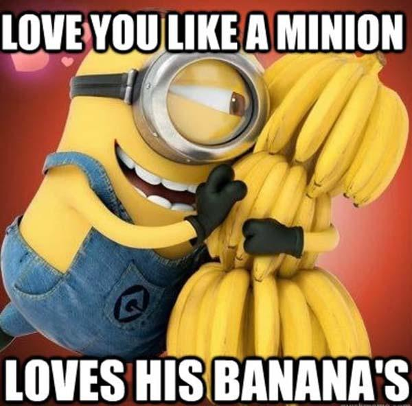 Minion-Love-Memes-for him