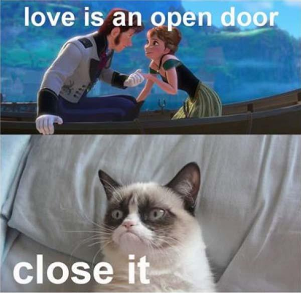 Love-is-an-open-door---cat-meme