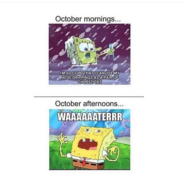 Spongebob meme October