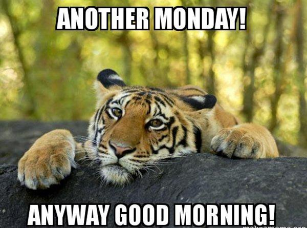 another-monday-anyway