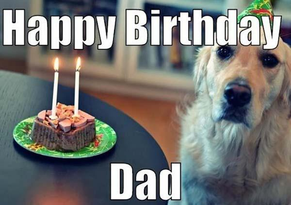 cake_dog_happy_birthday_dad_meme1