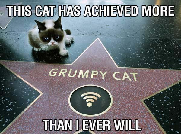 funny-grumpy-cat-walk-of-fame-meme