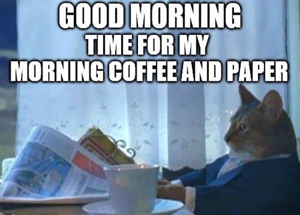 good morning coffee meme cat