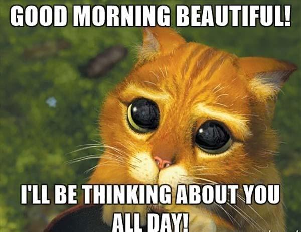 good-morning-sweet-memes