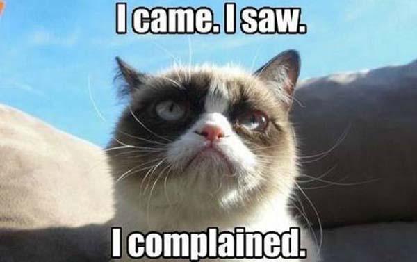 grumpy cate meme complain