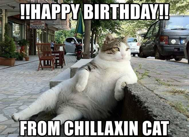 happy-birthday-from-chillaxin-cat