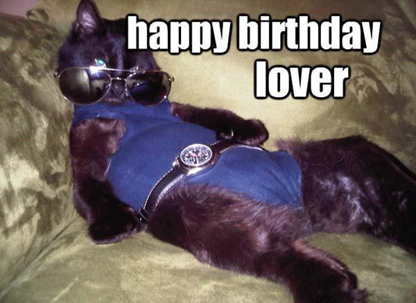 happy birthday meme cat lzy