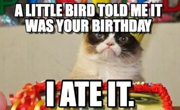 100 Happy Birthday Meme Meme Central