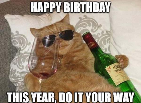 happy birthday meme for him cat