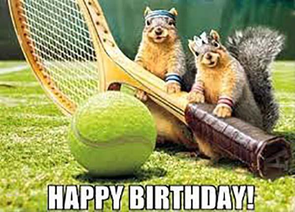 happy birthday meme friend squirrel
