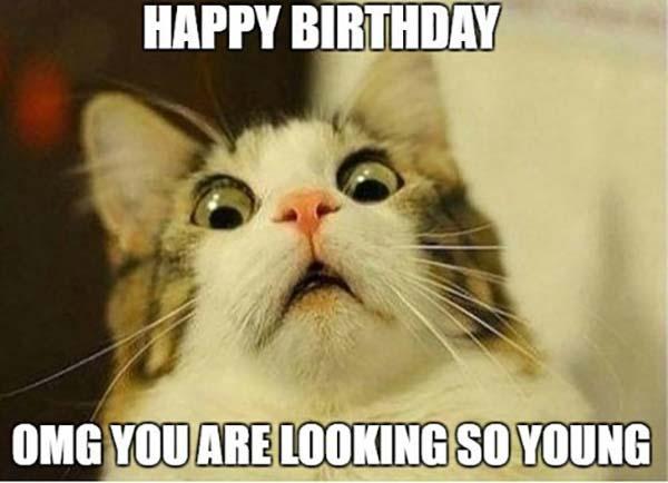 happy birthday mom meme cat