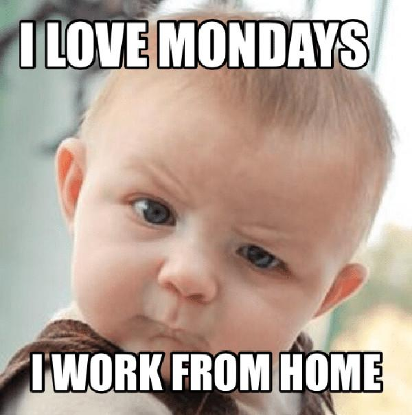 love-mondays-work-from-home-memes-coma-17997802