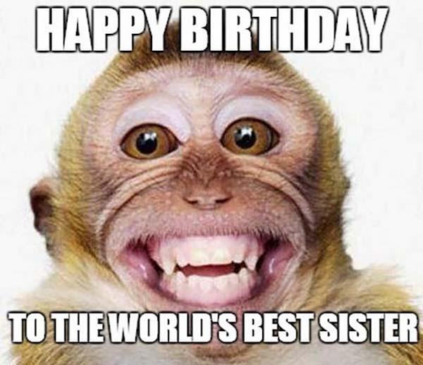 smiling_monkey_birthday_memes_for_sister1 copie