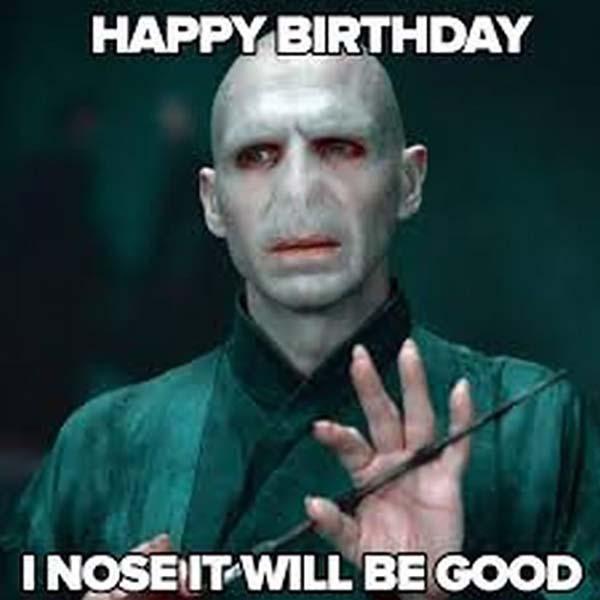 voldemort_harry_potter_birthday_meme2
