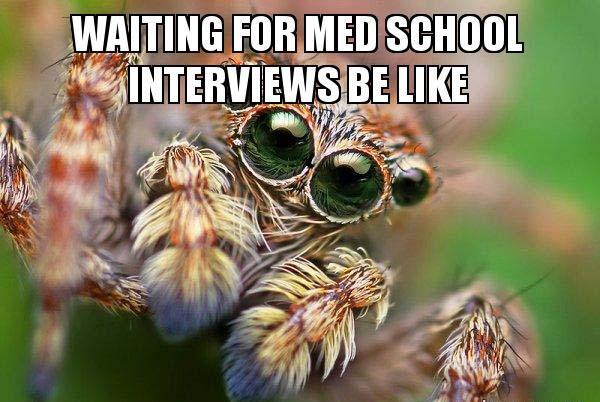 waiting-for-med