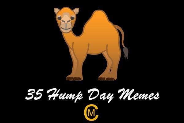 35 hump day memes