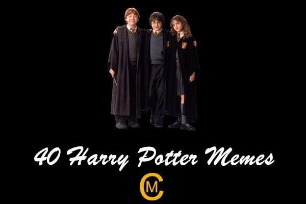 40 Harry Potter memes