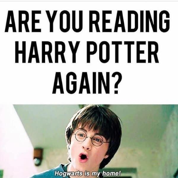 Harry Potter memes are you reading harry potter again