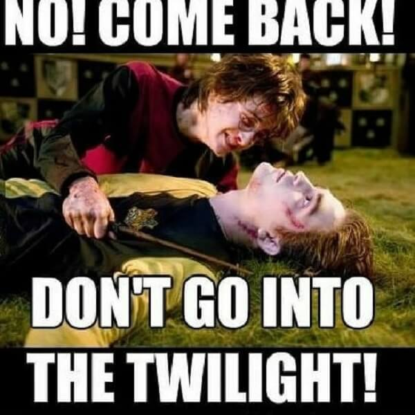 Harry Potter memes don't go to twilight