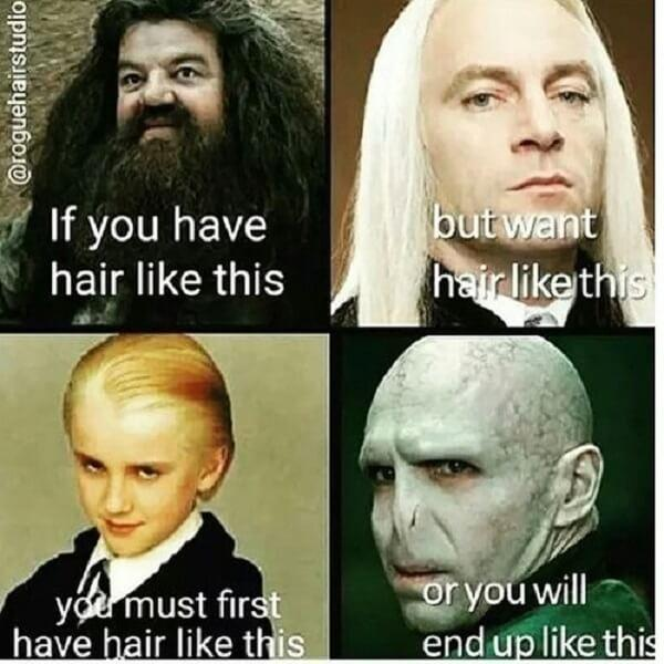 Harry Potter memes hair like this