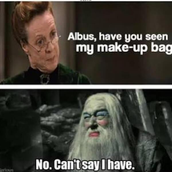 Harry Potter memes have you seen my make up