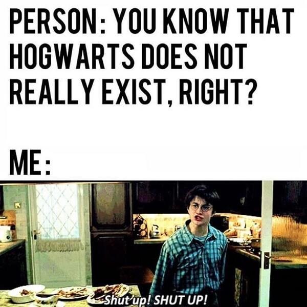 Harry Potter memes hogwarts