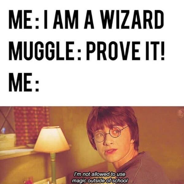 Harry Potter memes i am wizard