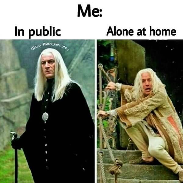 Harry Potter memes in public