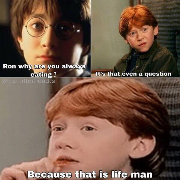Harry Potter memes ron i have a question