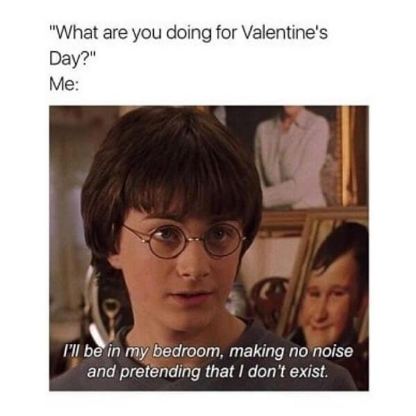 Harry Potter memes what are you doing for valentine day