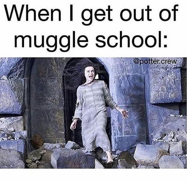 Harry Potter memes when i get out of muggle school