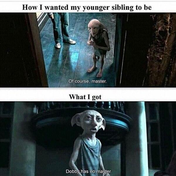 Harry Potter memess how i wanted my younger sibling to be