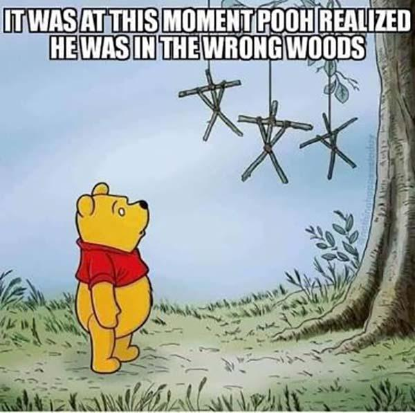 Offensive-Memes-Pooh-in-wrong-woods