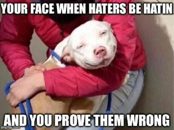 Smiling-Dog-Meme-Your-face-when-haters-be-hatin-and-you-prove-them-wrong