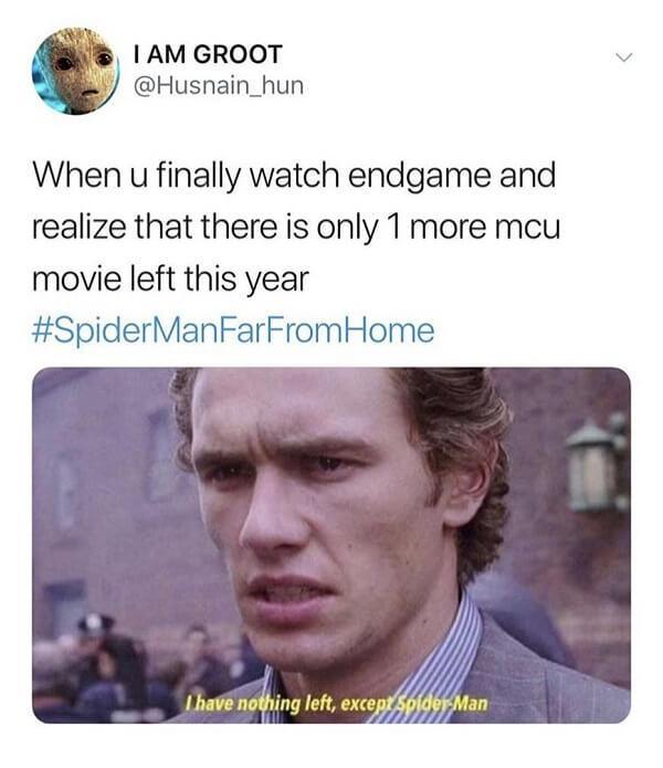 Spider Man Meme i have nothing less