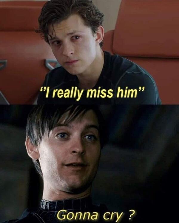 Spider Man Meme i really miss him