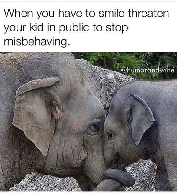 animal meme when you have to snile threaten your kid in public