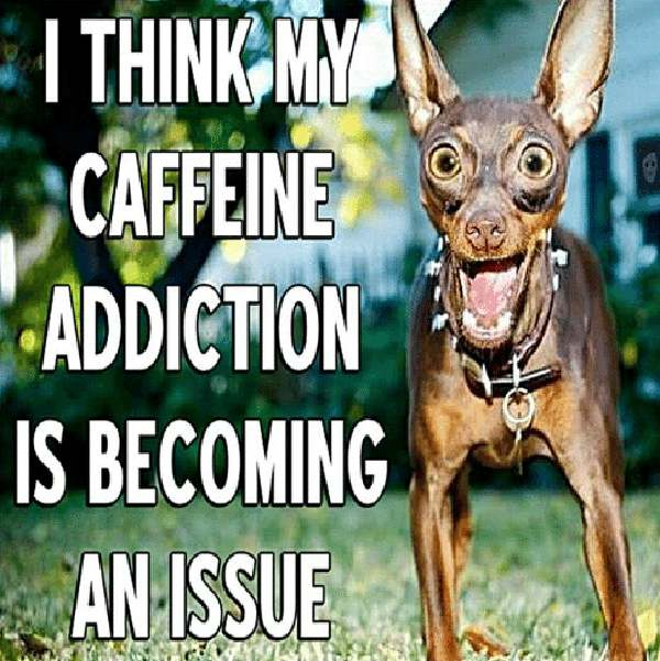 caffeine-addiction-is-becoming-an-issue-10178669