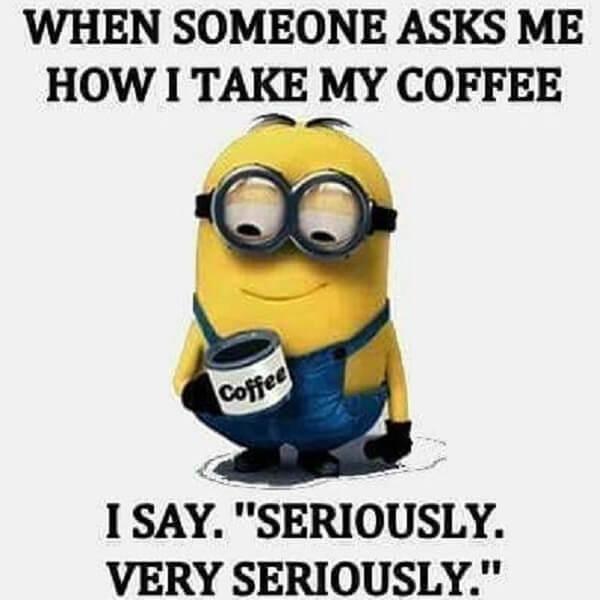 coffee meme minion