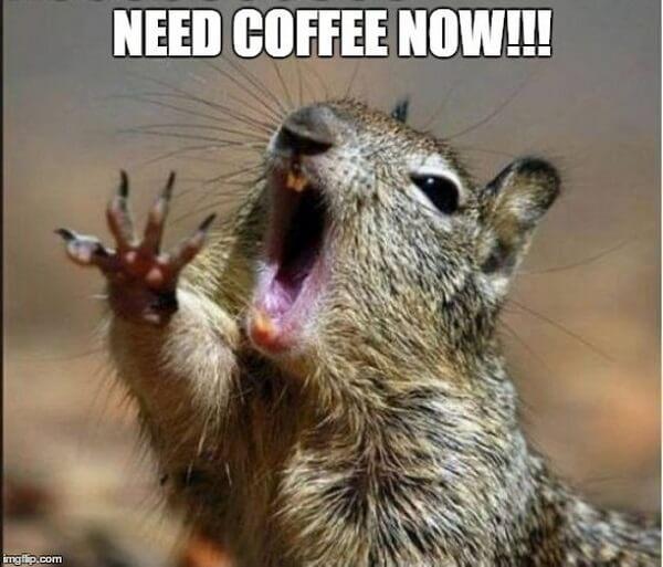 coffee meme need coffee now
