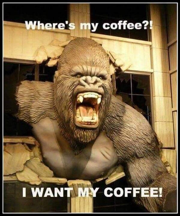 coffee meme where is my coffee