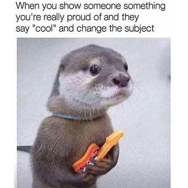 cute animal memes when you show someone something you proud of