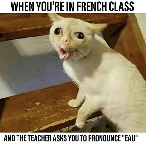 edgy memes when youre in french class