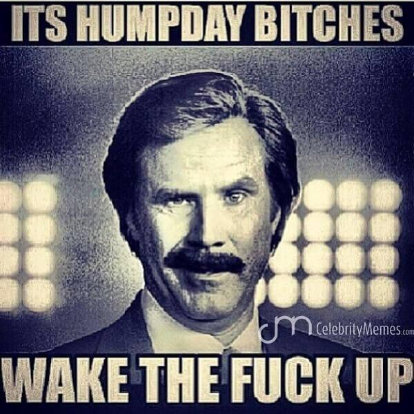 funny hump day meme