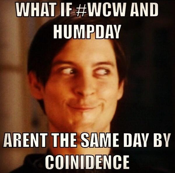 funny hump day memes what if...