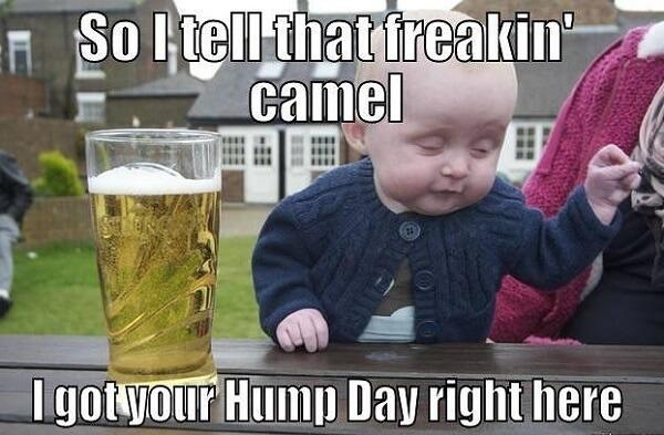 funny hump day memes