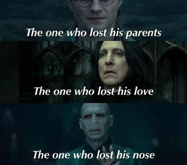 funny voldemort memes the one who lost his...