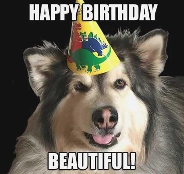 happy-birthday-dog-memes-funny