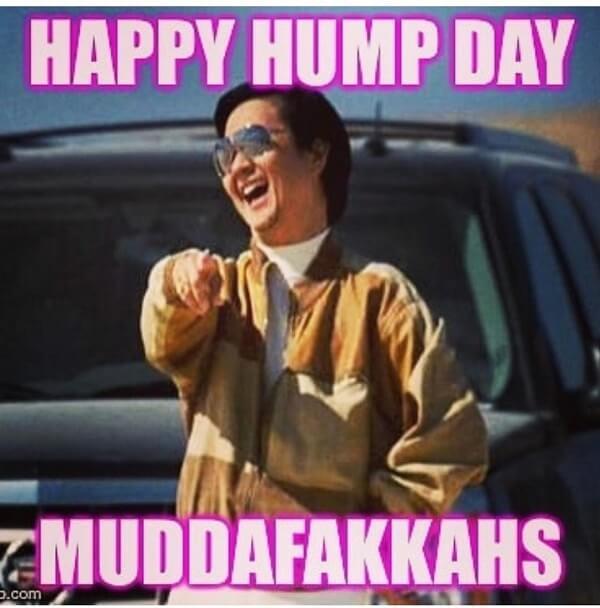 happy hump day memes muddafakkahs