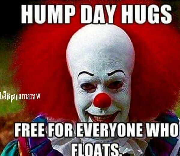 hump day meme free for everyone floats